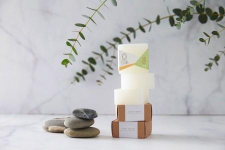 元淨日本柿子活力淨味皂100g